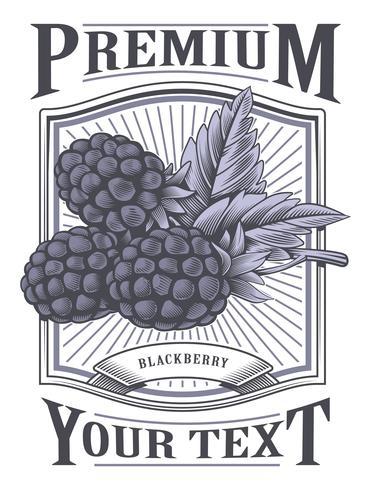 Blackberry-Vektor-Vintage-Label
