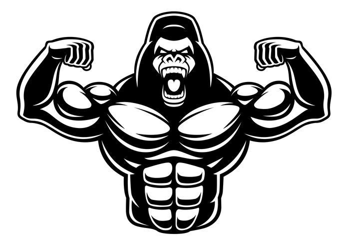 Black and white illustration of gorilla bodybuilder. vector