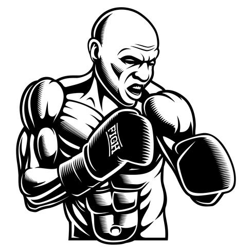 Black white illustration of box fighter vector