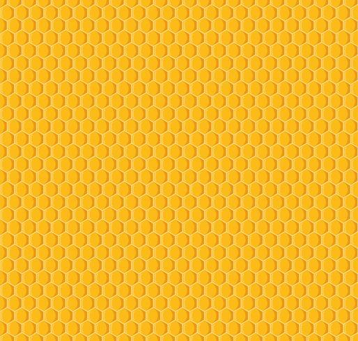 Vector de fondo de panal de patrones sin fisuras
