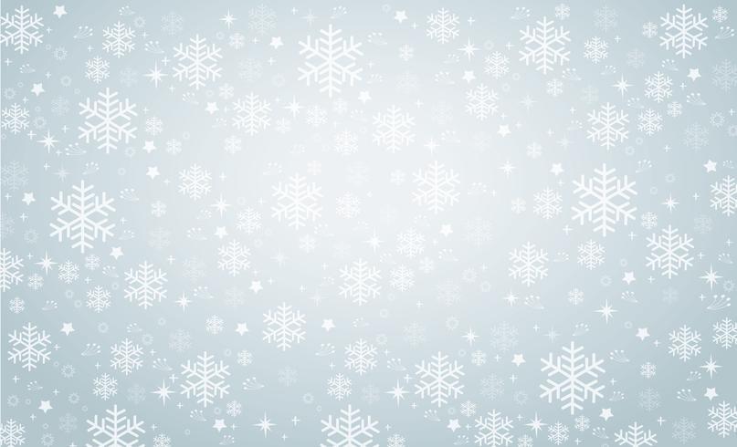 snowflake winter banner background  vector