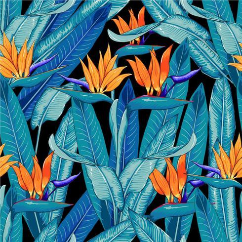 Naadloze patroon tropische mooi met oranje kleurenbloemen op geïsoleerde zwarte achtergrond De vectorkrabbel van de illustratietekening.