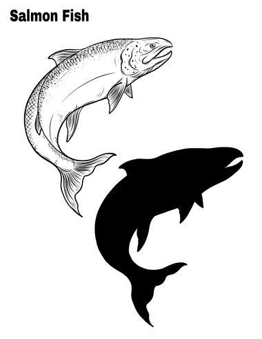 Vector de pescado a mano dibujando