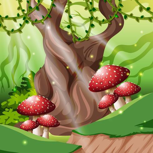Een tropisch regenwoud backgroundv