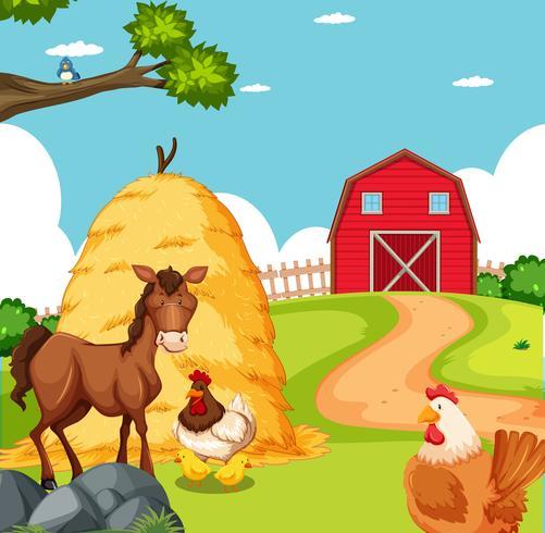 Animal à la scène des terres agricoles