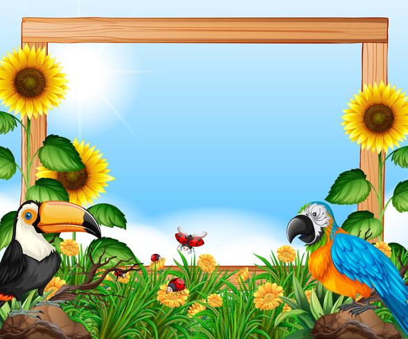 Birds on nature wooden frame