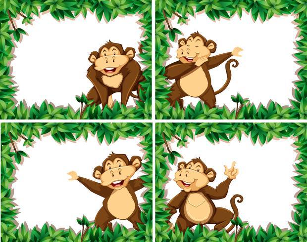 Set of monkeys in nature frames