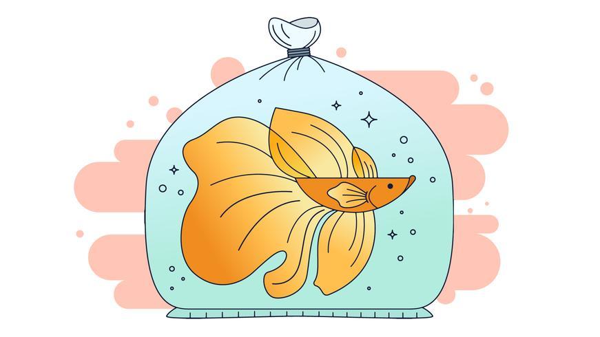 Vecteur poisson betta