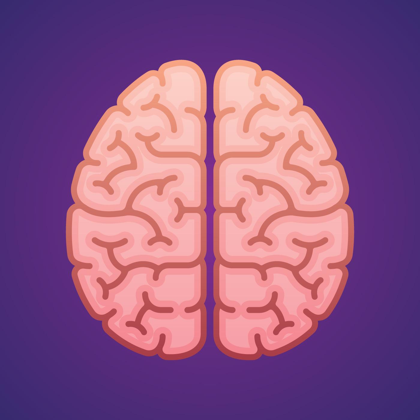 правый мозг левый мозг картинки как сделать машинку