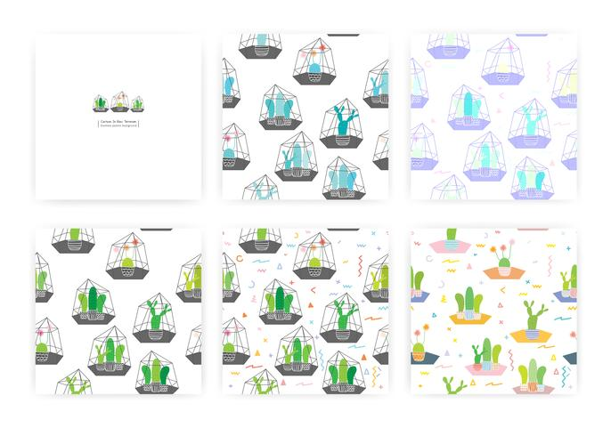 Set of seamless pattern with cactuses In glass terrariums. Background Illustrations for gift wrap design. vector