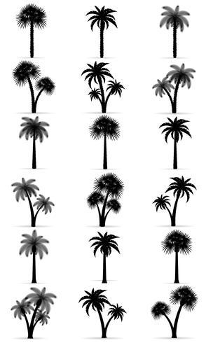 illustration vectorielle de palmier contour noir silhouette vecteur