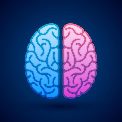 Ilustración ilustrada del símbolo pictórico de los hemisferios cerebrales del cerebro humano vector