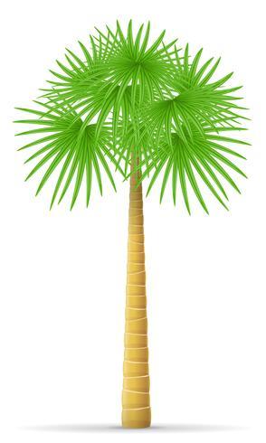 illustration vectorielle palmier vecteur
