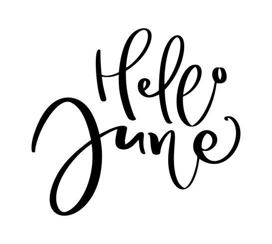 Dibujado A Mano Tipografía Letras Texto Hola Junio Aislado