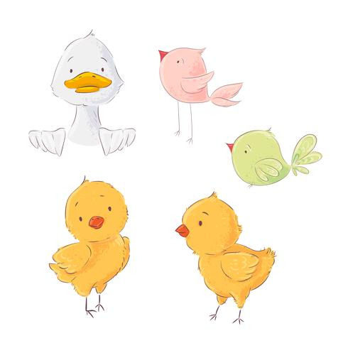 Set of cute poultry chickens and ducklings, vector illustration in cartoon style