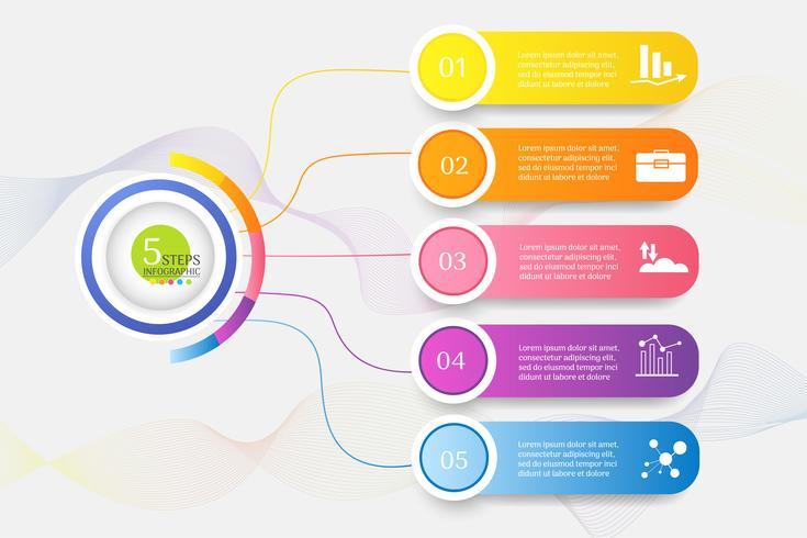 La plantilla del diseño 5 pasos del elemento infographic de la carta con la fecha del lugar para las presentaciones, vector EPS10.