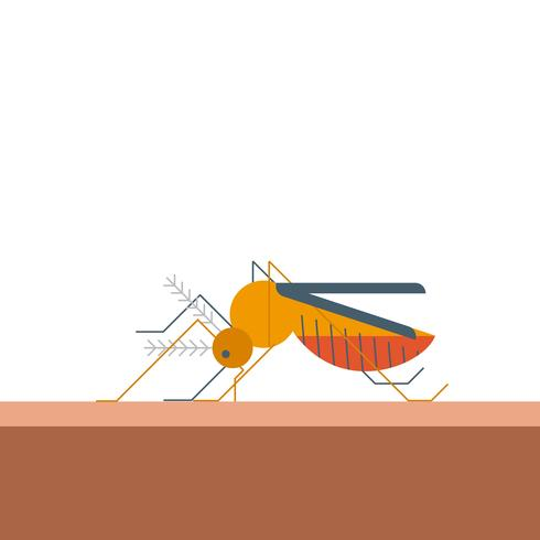 Mosquito morde a pele vetor