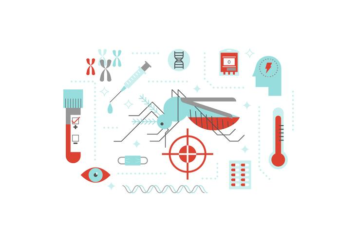 Virus or disease transmitted by mosquito illustration concept