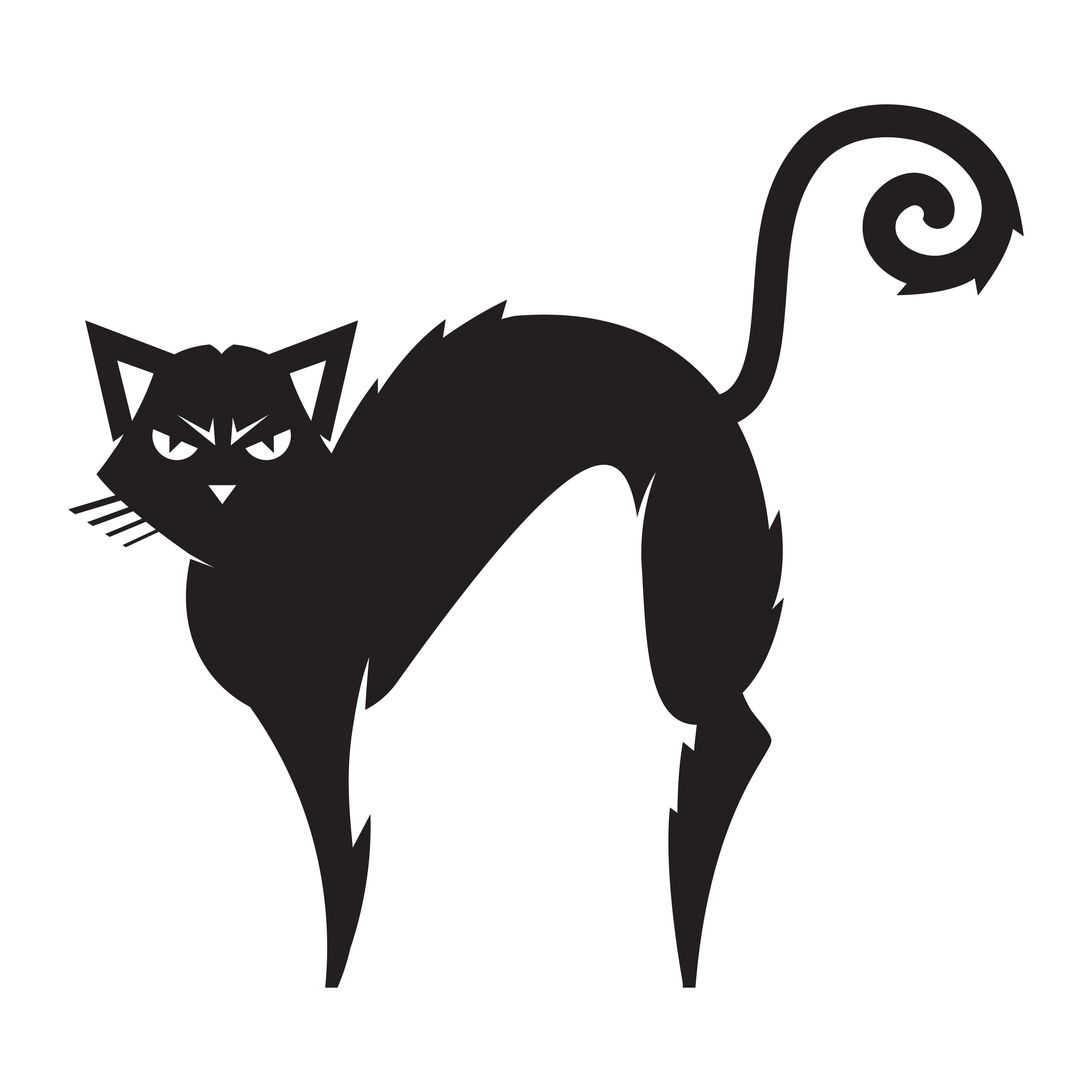 貓q版 免費下載 | 天天瘋後製