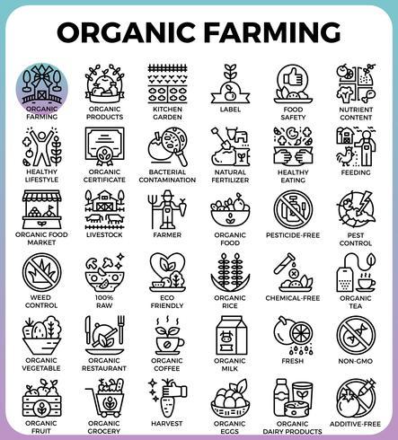 Ícones de linha detalhada de conceito de agricultura biológica