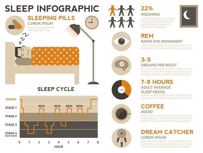 Slaap Infographic vector