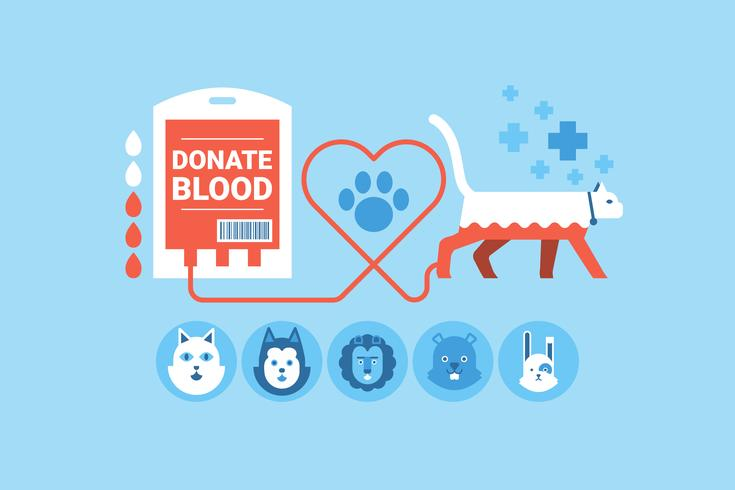 Animal Blood Donation vector
