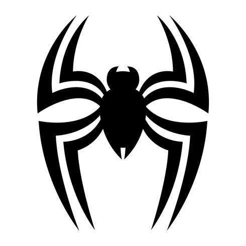 Spider insect bug