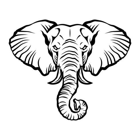 Angry cartoon elefant illustration