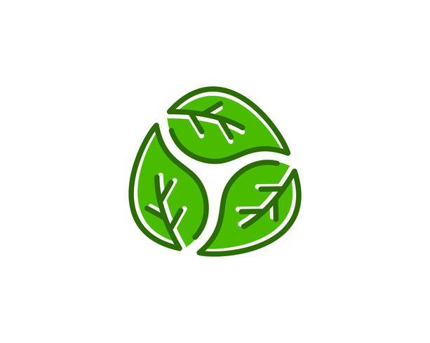 Natürliches Blatt Logo Icon Vector
