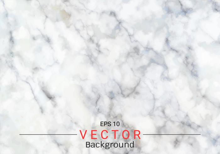 White gray marble texture. vector