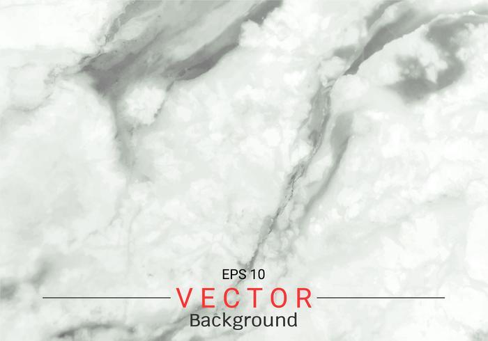 Vitgrå marmorstruktur. vektor