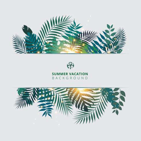 Verão na moda tropical com folhas de palmeira exóticas ou plantas e efeito da luz no fundo branco.
