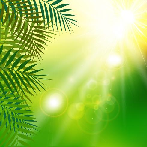 O verde fresco do verão sae com a luz solar no fundo natural. vetor