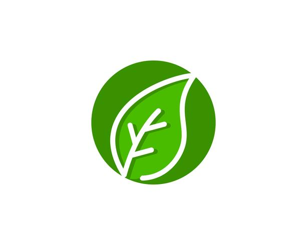Natural Leaf Logo ícone Vector