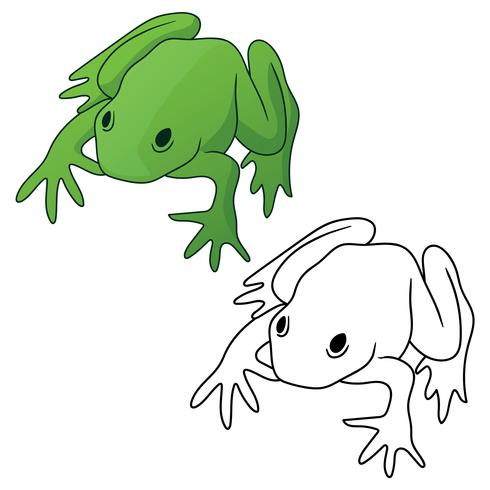 Frog in both full color green tones and black outline version isolated vector illustration