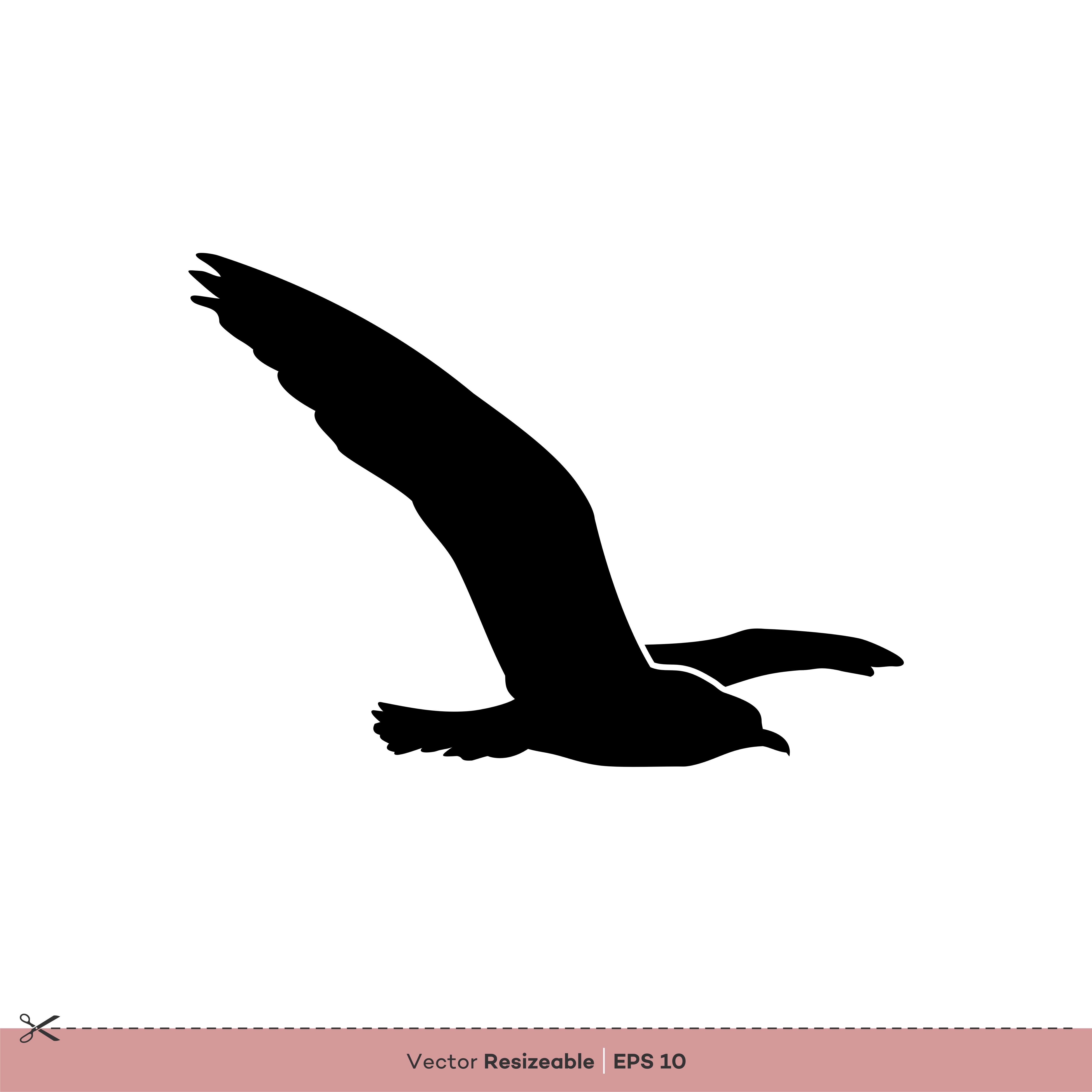 Seagull - Bird Silhouette Vector Logo Template ...