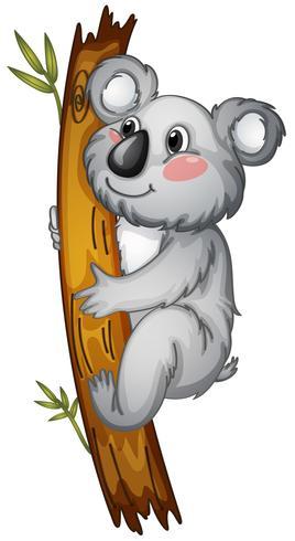 ours blanc vecteur