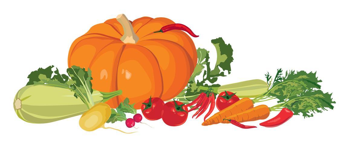 Rijpe groenten. Stilleven met verse boerderijvoeding vector