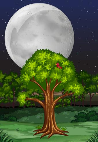 Nature scene with tree and fullmoon at night