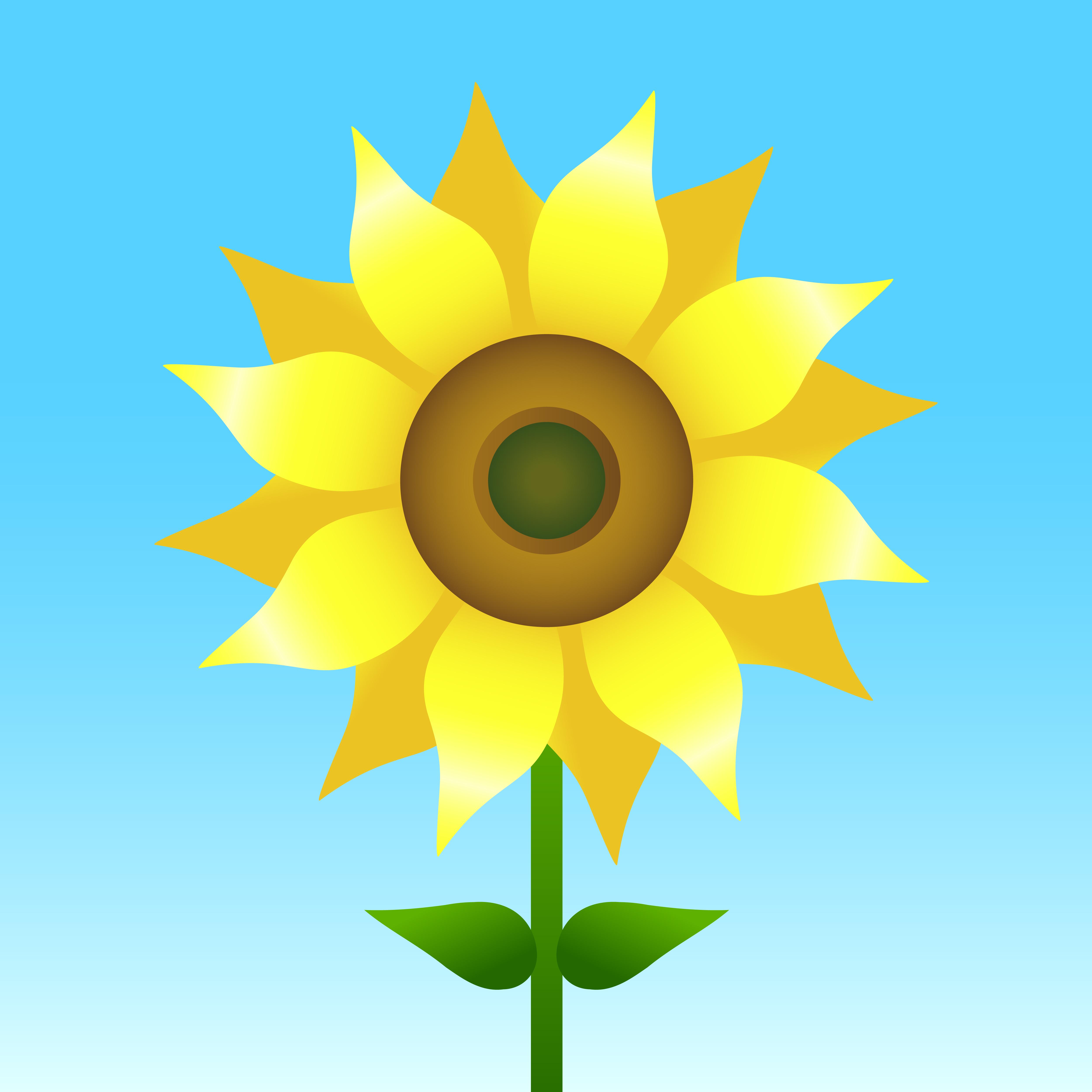 Sunflower vector illustration - Download Free Vectors ...