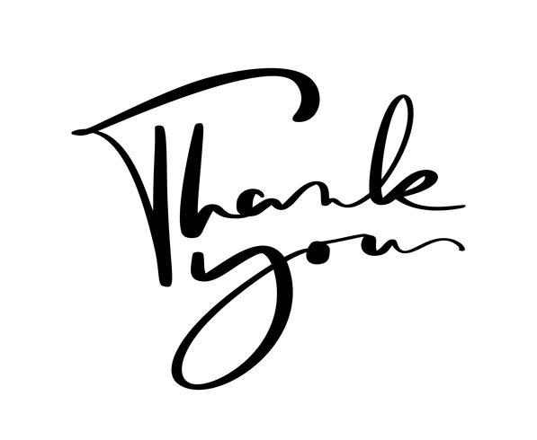 vintage vector de texto de caligrafía gracias. Dibujado a mano aislado sobre fondo blanco. Ilustración de letras caligráficas para boda, tarjeta de felicitación, etiqueta