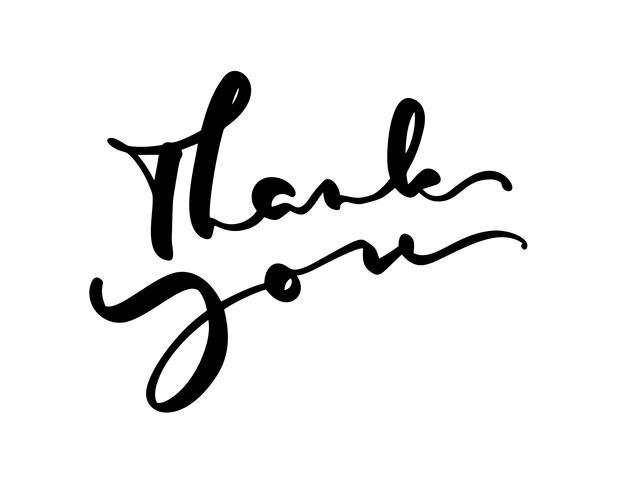 El texto dibujado mano del vector del vintage le agradece Aislado en el fondo blanco Ilustración de letras de caligrafía para boda, tarjeta de felicitación, etiqueta