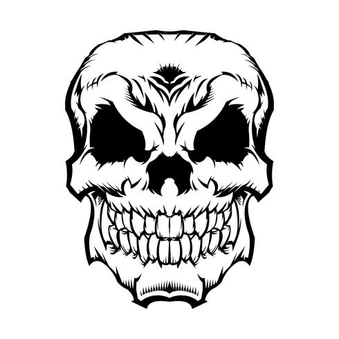 Grafica del cranio