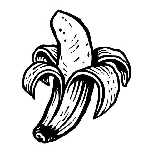 Banan vektor