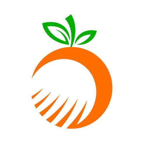Orange frukt illustration