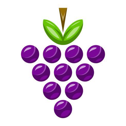 Bunt druvor Fruktmat hälsosam mellanmål vektor