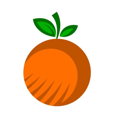 Orangenfrucht Illustration