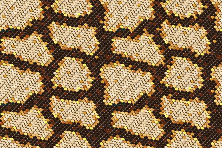 Python skin seamless background on vector graphic art.