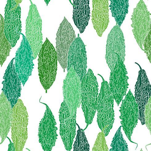 Fond transparent vert Gourde amère.