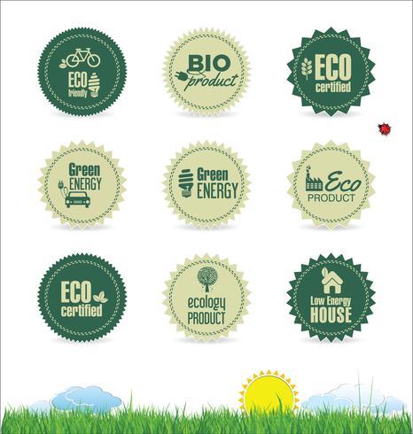 Ecologia moderno diseño